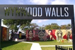 Wynwood Art and Design District 17